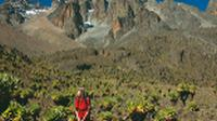 Trekker on Mt Kenya |  <i>Sue Badyari</i>