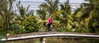 Beautiful colour as we cycle the Mekong Delta   Lachlan Gardiner