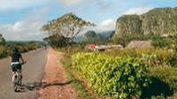 Cycling through the verdant Vinales Valley in Cuba |  <i>Carlie Ballard</i>