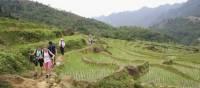 School kids trekking in Vietnamese countryside | Nick Hardcastle