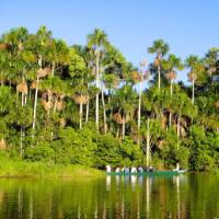 Students take an Amazon cruise on their educational travel trip in Peru | Drew Collins