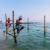 The famous Stilt fisherman of Sri Lanka | Richard I'Anson