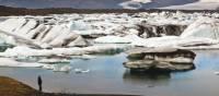 Man viewing icebergs carved from Breidamerkurjokull in Jokulsarlon glacial lagoon. | Richard I'Anson
